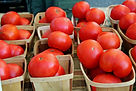 Dallas Farmers Market  04.jpg