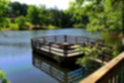 Parks Recreation Access Paulding | Events Festivals Concerts Parks Dining Dallas Hiram Paulding