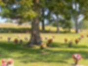 Dallas Memory Gardens - Perpetual Care Dallas Paulding County GA