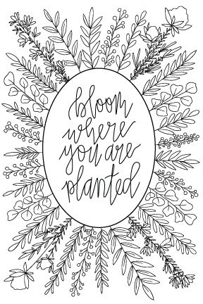 bloom-where-you-are-planted-postcard-for