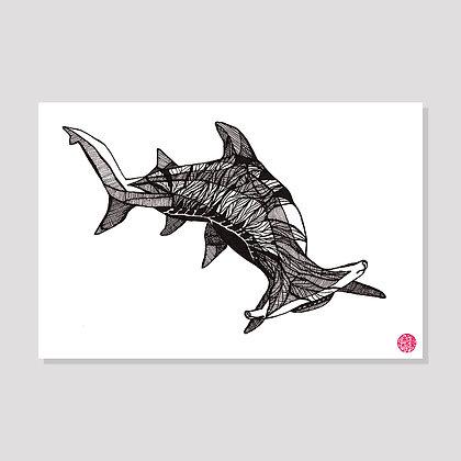 Hammerhead Shark Postcard
