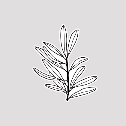 Olive VINYL Sticker