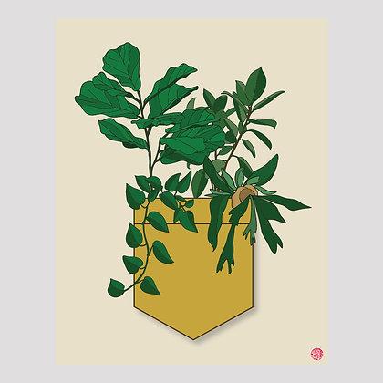 Plant Pocket | 11x14 Print