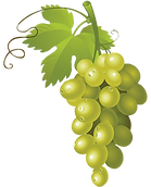 white-wine-muscat-grape-grape-png-clip-a