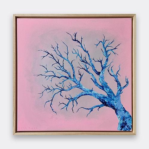 'blue tree'