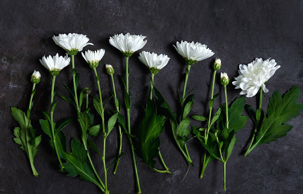 Flowers_für_Naturalmente.png