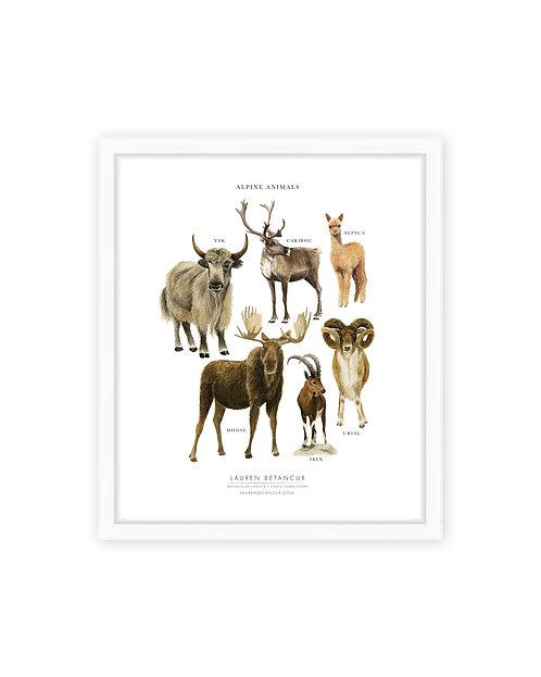 Alpine Animals Print