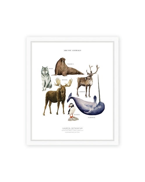 Arctic Animals Print