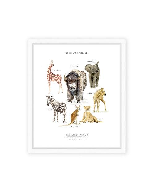 Grassland Animals Print