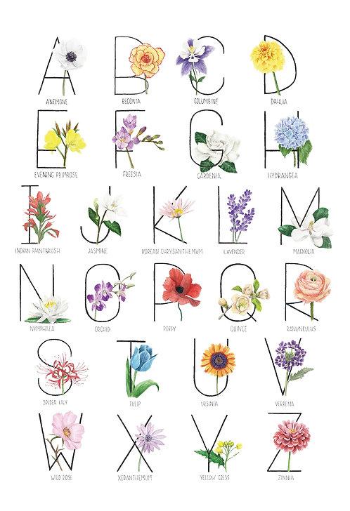 Horizontal Flower Alphabet Poster