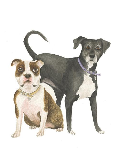 2 Pup Portrait