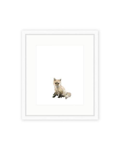 Original Baby Fox