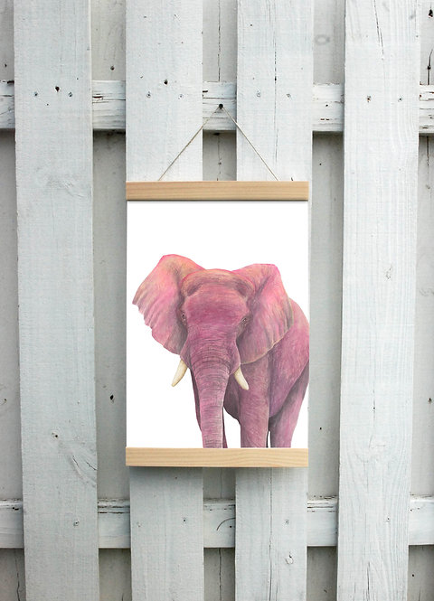 Pink Elephant Canvas Hanging Print