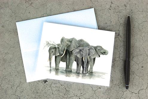 Water Elephants Card