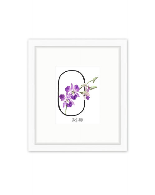 Orchid Letter