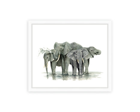 Water Elephants Print