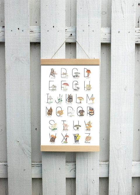 Mushroom Alphabet Canvas Hanging Print