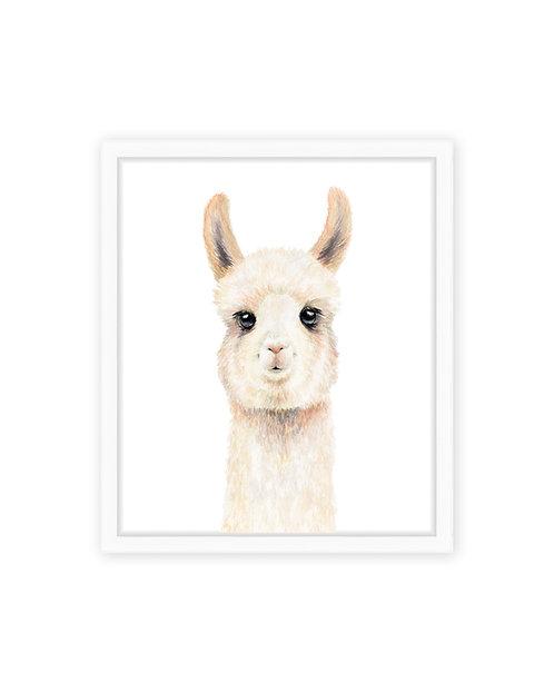 Original Llama