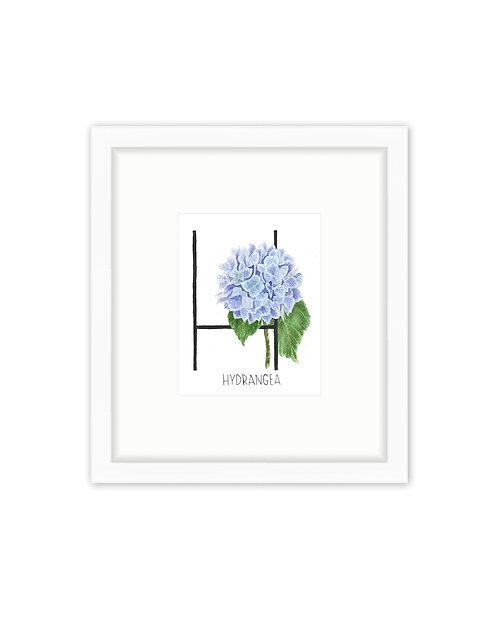 Hydrangea Letter