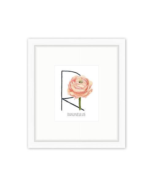 Ranunculus Letter