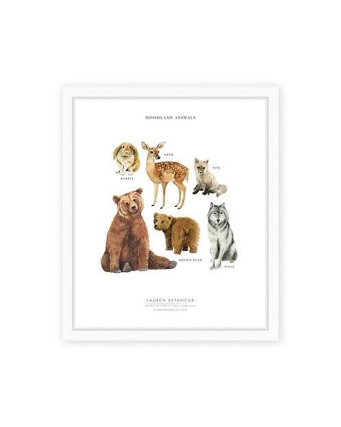 Woodland Animals Print