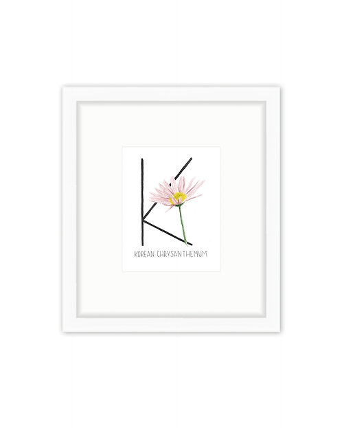 Korean Chrysanthemum Letter