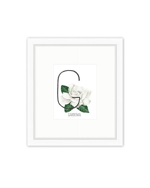 Gardenia Letter