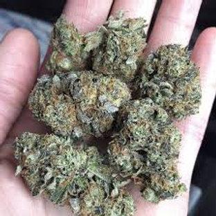 Witch Hunt marijuana