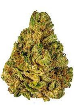 T99 weed strain