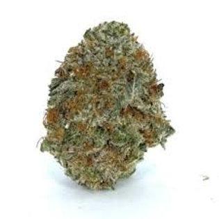 OGEddyLepp marijuana
