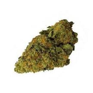 Bedica weed
