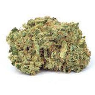 TempleKush marijuana