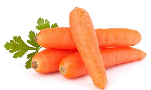 HAVUÇ- Daucus carota