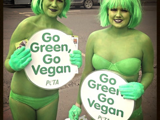 5 Ways to Go Green this St. Patricks Day