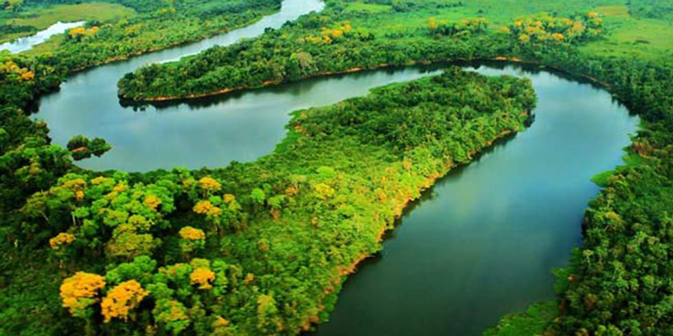 Retiro Detox Amazonas: Kundalini Yoga,Meditación y Ángeles