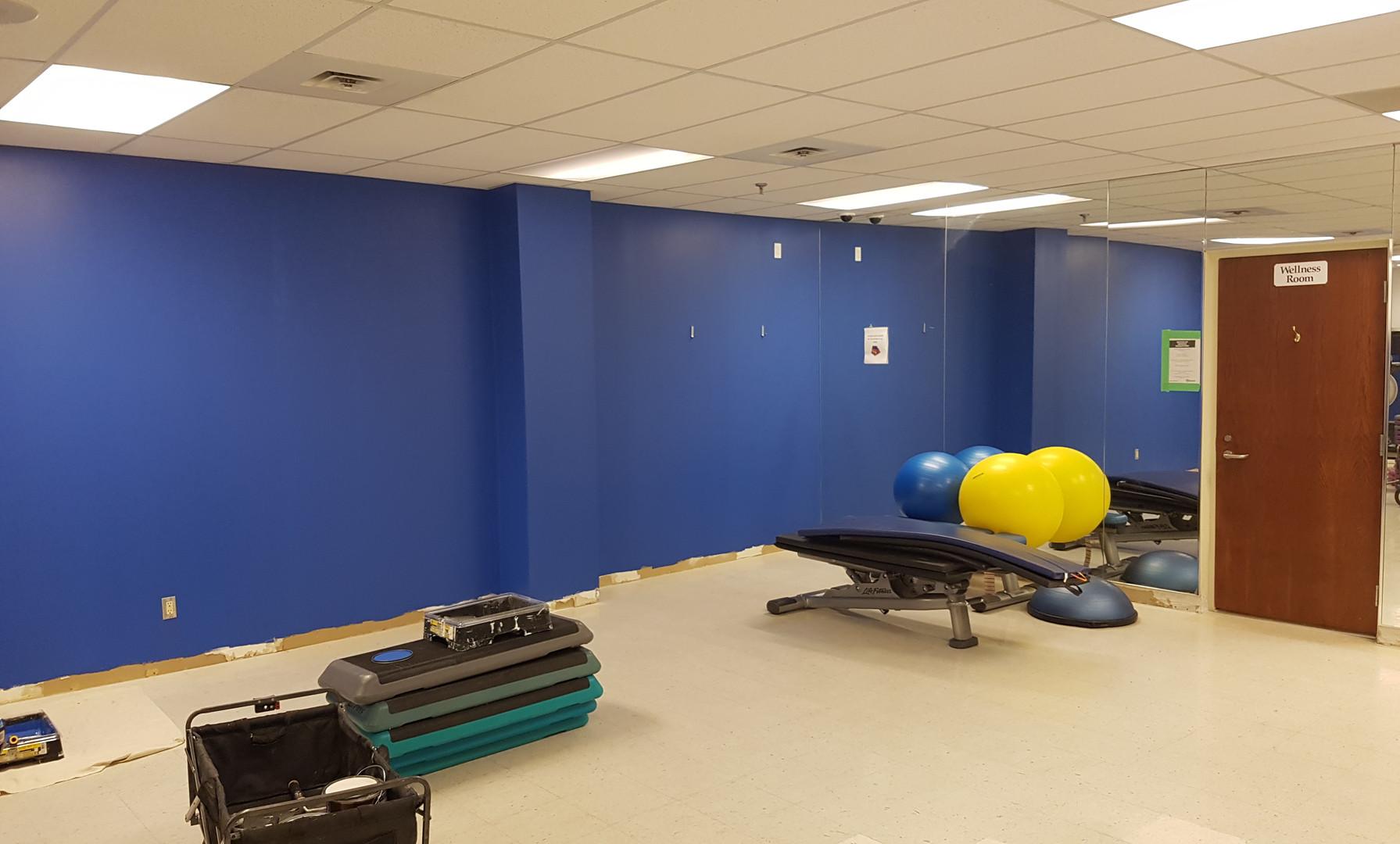 Fitness Room Paint