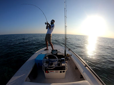 patch reef morning fishing.jpg