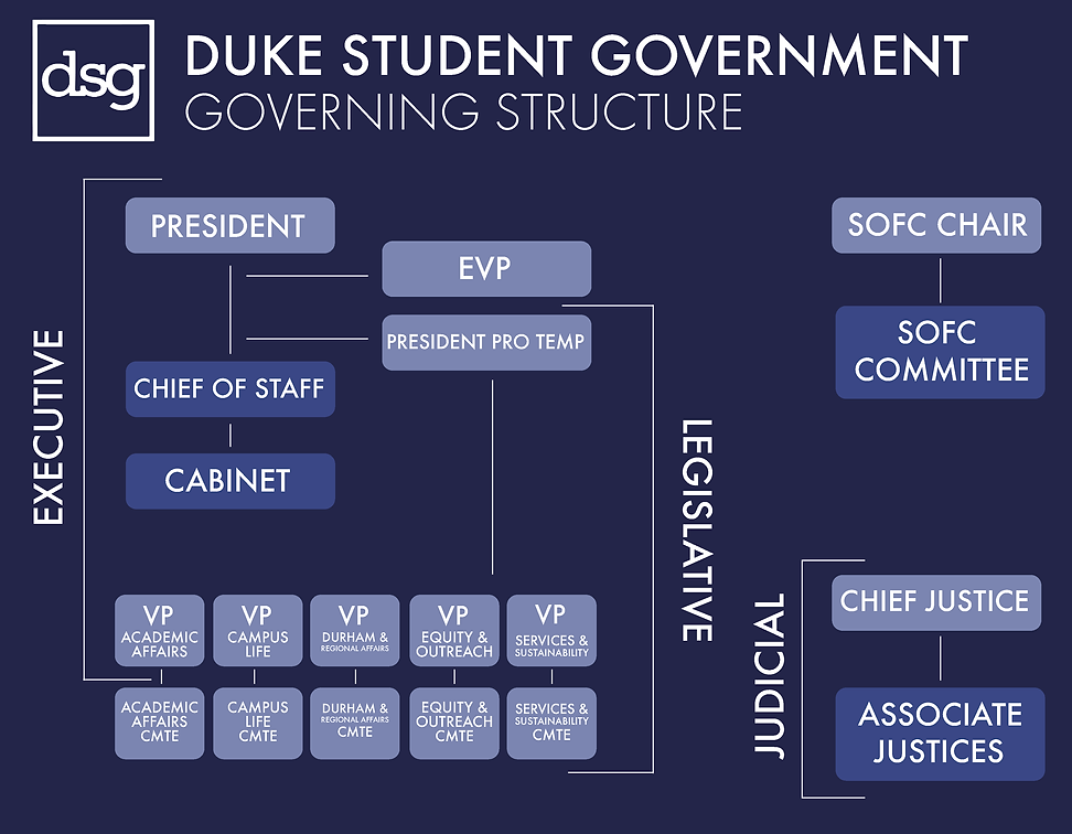 DSG_GoverningStructure-01.png