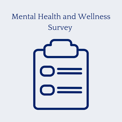 Mental Health and Wellness Survey