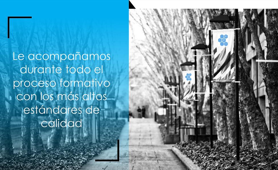 Cita_Formación_Politecnica.png