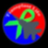 logo-final-interim2-Gunship-Gray.jpg