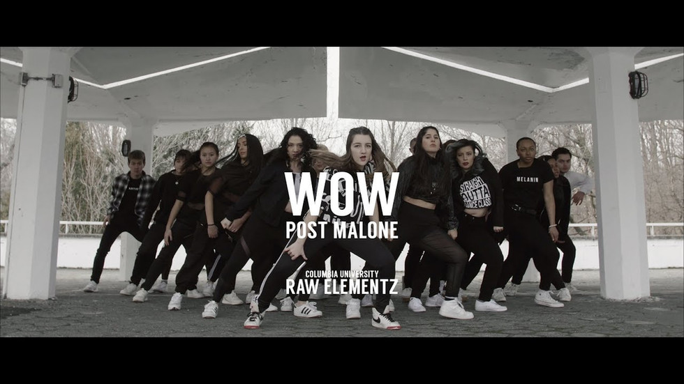 Raw Elementz - Wow by Post Malone - Promo Dance Video