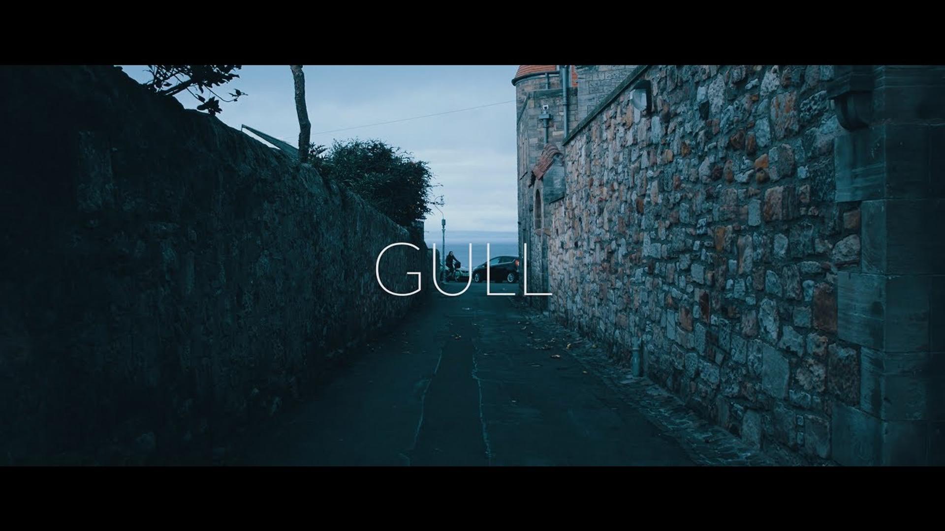 Gull (GH5)