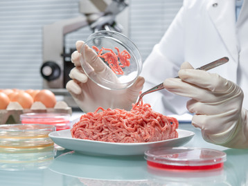 FDQ Food Technology Qualifications finally added to National Skills Fund.