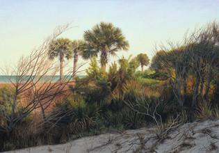 """""""Back Dunes"""" #20132 Acrylic on Linen 28"""" x 40"""""""