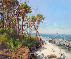 """Hunting Island""  Oil on Linen  20"" x 24"""