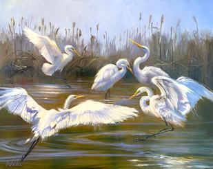 """Egret Soiree"" Oil on Canvas 48"" x 60"""