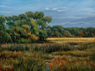 """#00319 """"Spring In the Marsh"""" Oil on Gesso Board 9"""" x 12"""" Another view from Islands Causeway with an emphasis on the contrast in textures and colors within the painting."""