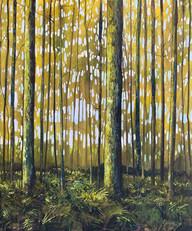 """Woodland"" Acrylic on Canvas 20"" x 24"""