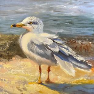 """Sun Catcher"" Oil on Canvas 10"" x 10"""